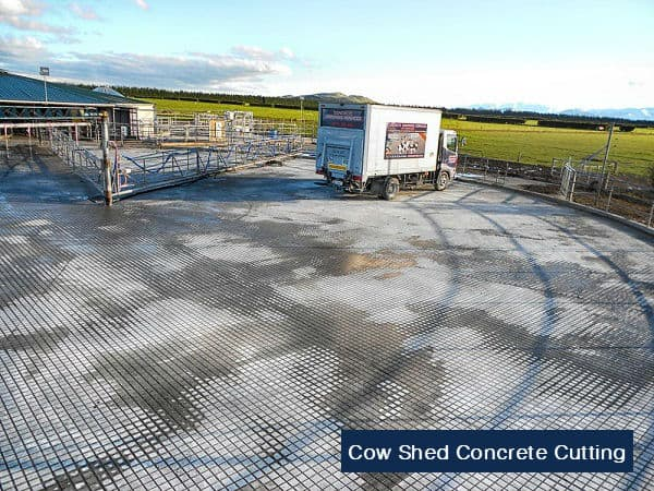 cow shed concrete cutting